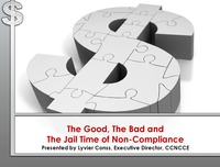 online magazine - The Good, the Bad and the Jail Time of Noncompliance