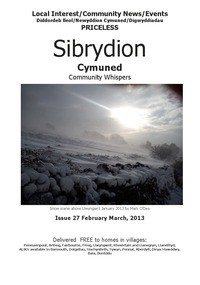 online magazine - Sibrydion Cymuned, February/March issue.