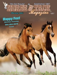 online magazine - Horse 'N Tack Feb 14 Area 13