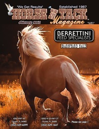 online magazine - Horse 'N Tack Feb 14 Area 7