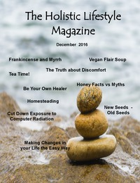 online magazine - Volume 2, Number 2
