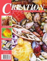 online magazine - Creation Illustrated Summer 2018 Edition withAds