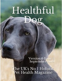 online magazine - Healthful Dog Volume 6 Issue 3