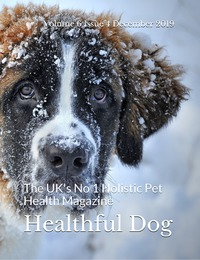 online magazine - Healthful Dog Volume 6 Issue 4